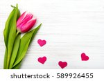 tulip flower small hearts on... | Shutterstock . vector #589926455