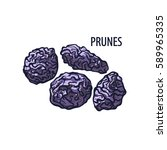 vector set of dried prunes.... | Shutterstock .eps vector #589965335