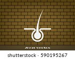 hair icon vector illustration | Shutterstock .eps vector #590195267