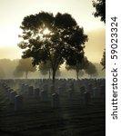 Cemetery On A Foggy Morning