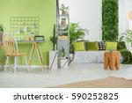 green home interior with sofa ... | Shutterstock . vector #590252825