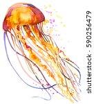 jellyfish watercolor... | Shutterstock . vector #590256479