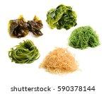 fresh green seaweed on white... | Shutterstock . vector #590378144