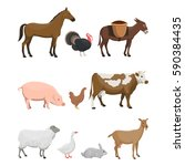 vector illustration set of farm ... | Shutterstock .eps vector #590384435