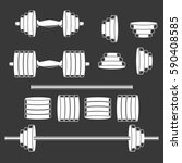 the dumbbells and barbells...