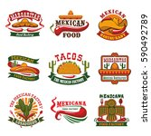 mexican cuisine restaurant and... | Shutterstock .eps vector #590492789