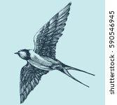 swallow in flight  detailed... | Shutterstock .eps vector #590546945