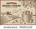 apple organic farming landscape.... | Shutterstock .eps vector #590551139