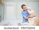 young female veterinarian in... | Shutterstock . vector #590732045