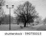 the planty  a green belt...   Shutterstock . vector #590750315