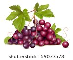 vector. grape cluster with... | Shutterstock .eps vector #59077573