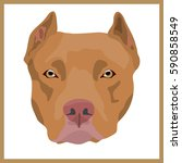 icon with american pit bull... | Shutterstock .eps vector #590858549