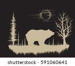 bear in the strange forest... | Shutterstock .eps vector #591060641