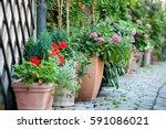 Harming Hidden Garden....
