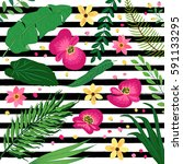 beautiful green botanical... | Shutterstock . vector #591133295