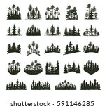 tree outdoor forest black... | Shutterstock .eps vector #591146285