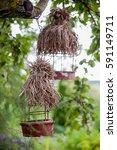 bird feeders. tree house for...   Shutterstock . vector #591149711