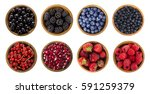 black blue and red berries.... | Shutterstock . vector #591259379