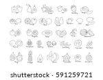 vector set of colored hand... | Shutterstock .eps vector #591259721