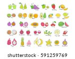 vector set of colored hand... | Shutterstock .eps vector #591259769