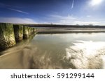 baltic sea at evening light and ... | Shutterstock . vector #591299144