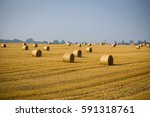 rolls of haystacks on the field....