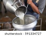 worker pouring milk into a... | Shutterstock . vector #591334727