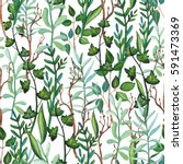 seamless herbal pattern of... | Shutterstock . vector #591473369