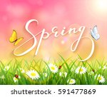 lettering spring with pink... | Shutterstock .eps vector #591477869