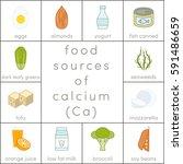 food sources of calcium  vector ... | Shutterstock .eps vector #591486659