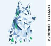 animal husky illustration ...   Shutterstock .eps vector #591532361