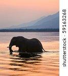 Sundown. Elephant On The River...