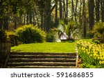 Small photo of Garden design. Formal garden. Spring in garden.