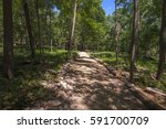 A Wide Hiking Path Through The...