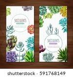 vertical banners set on a...   Shutterstock .eps vector #591768149