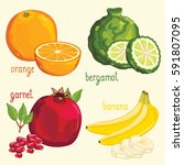 set of fruit mix raster... | Shutterstock . vector #591807095