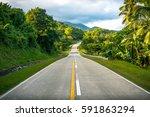 open road trip through tropical ... | Shutterstock . vector #591863294