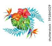 tropical flowers.watercolor... | Shutterstock . vector #591864329