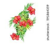 tropical flowers.watercolor... | Shutterstock . vector #591864359