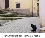Stock photo black cat in a historical italian village background 591867851