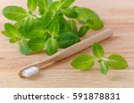 Small photo of alternative natural wood toothbrush and mint on wooden background
