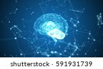 human brain being formed by... | Shutterstock . vector #591931739