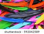feathers texture. beautiful... | Shutterstock . vector #592042589