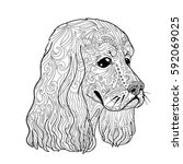 coloring book page with spaniel ... | Shutterstock .eps vector #592069025