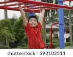 Boy Using The Jungle Gym At...