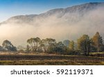 morning autumn landscape. fog among trees on meadow at the foot of the mountain - stock photo