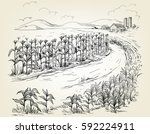 hand drawn vector illustration... | Shutterstock .eps vector #592224911
