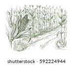 hand drawn vector illustration... | Shutterstock .eps vector #592224944