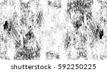 grunge black and white urban... | Shutterstock .eps vector #592250225