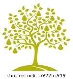 Vector Pear Tree Isolated On...
